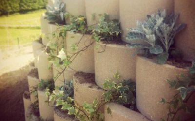 Remodelación de jardín de vivienda unifamiliar.